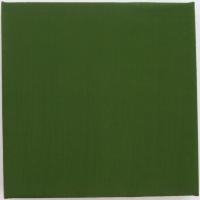 15_pigmenty-platno-25x25-2013_v2.jpg